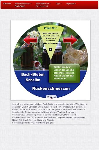 玩健康App|Rückenschmerzen Scheibe免費|APP試玩