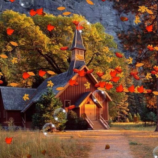 秋季動態壁紙 攝影 App LOGO-APP試玩