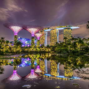 Marina Bay Sands by Alex Shanti - City,  Street & Park  Night ( reflection, park, long exposure, night, singapore, , Urban, City, Lifestyle )