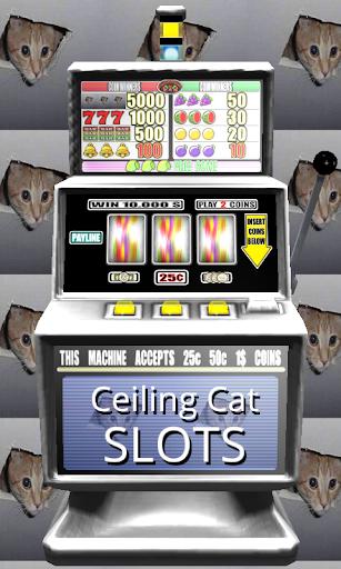 3D Ceiling Cat Slots - Free