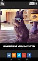 Screenshot of 1MP - Миллион приколов
