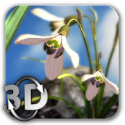 Nature Live❁ Spring Flowers XL icon