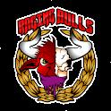 RAGING BULLS icon