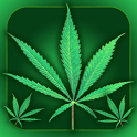 WeeD CooK icon