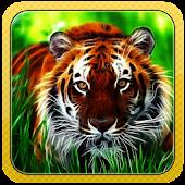 Wild Tiger 3D