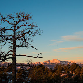 Pikes Peak Sunrise by Andrew Brinkman - Novices Only Landscapes ( blue sky, pikes peak, mountain, nature, colorado, trees, sunrise )