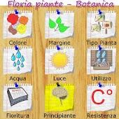 Floria piante e fiori Botanica