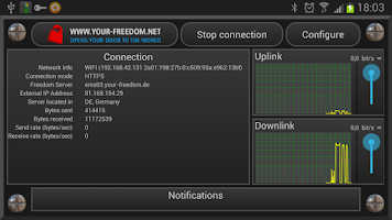 Screenshot of Your Freedom VPN Client