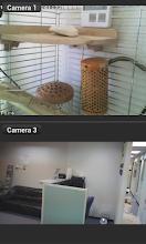 Cam Viewer for Zmodo cameras screenshot thumbnail