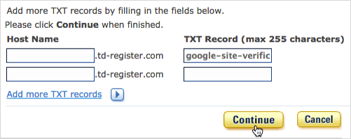 TXT Record field