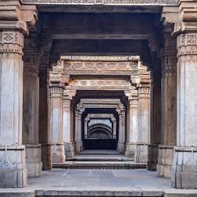 adalaj by Himanshu Maya - Buildings & Architecture Architectural Detail