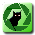CatShare Cat Sharing Wallpaper logo