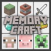 Memory Craft Pro Edition