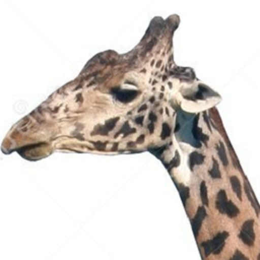 Tap The Giraffe LOGO-APP點子