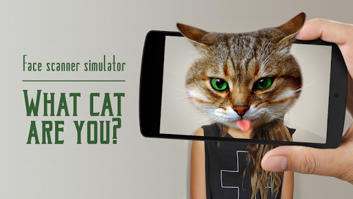Face Scanner: What Cat 3