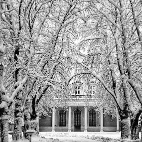 by Vladimir Jablanov - Black & White Landscapes