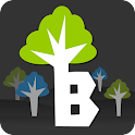 Branch - Social Search icon
