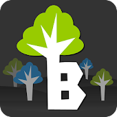 Branch - Social Search