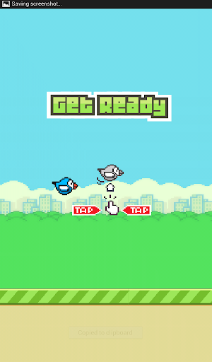 Flippy Bird Pro