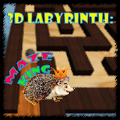 3D Labyrinth: Maze King