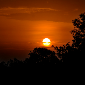sunrise in jungle by Ashutosh Singhvi - Novices Only Landscapes ( silhouette, sunrise, morning, early morning )