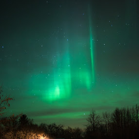 Lights above the cabin by Charles Adam - Landscapes Starscapes ( cabin, colorful, colors, aurora, aurora borealis, forest, woods, northern, lights, colour, magical, stars, night )
