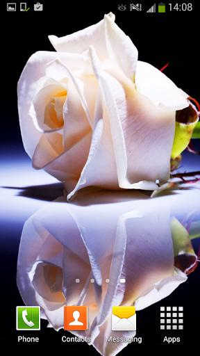 無料个人化Appの白いバラ ライブ壁紙|記事Game