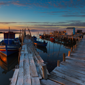 Path to Tranquility by João Freire - Landscapes Sunsets & Sunrises ( sunset, boats, carrasqueira, travel, local, landscape, portugal,  )