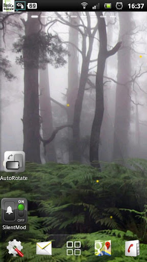 rain forest live wallpaper