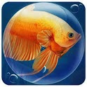 Dream Fish Seasons icon