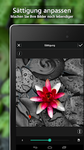 PhotoDirector - Photo Editor Screenshot