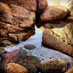 by Prerna  R - Nature Up Close Rock & Stone