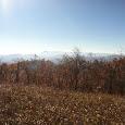 Appalachian Beauty