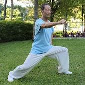 Chen TaiChi18-2 陈氏十八式太极拳2