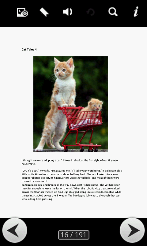 Amazing Cat Tales - screenshot