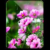 Spring Flowers 3d Live WP