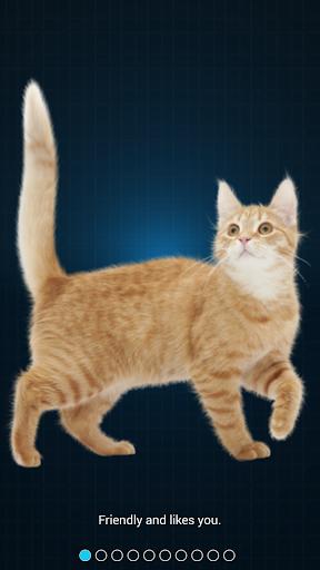 Cat Language Translator