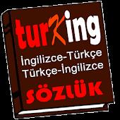 TurKing İngilizce Sözlük