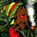 Rasta Bob logo