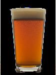 Dam Extra Pale Ale