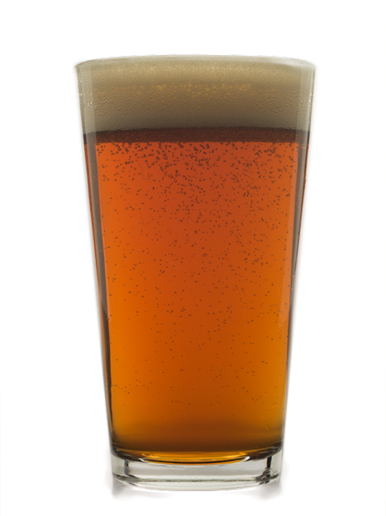 Logo of Dam Extra Pale Ale