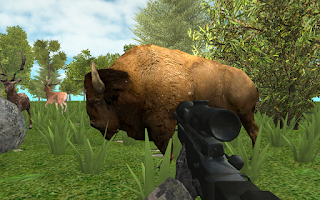 Screenshot of Hunter: Animals In The Forest