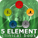 Five Element Clinic Book