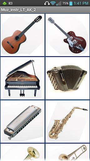 Muzikiniai instr. 2