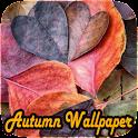 Beautiful Nature Autumn icon