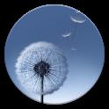Touchwhiz Apex/Nova Theme icon