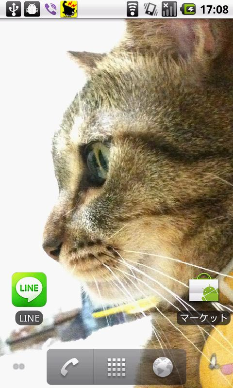 Cats Charity Live Wallpaper - screenshot