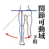 関節可動域 (下肢)