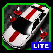 Download Full Parking Challenge 3D LITE  APK