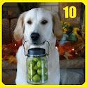 Top 10 Dog Commandments icon